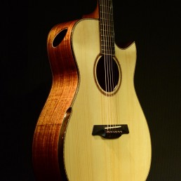 Maestro Guitars - Singapore Handmade Guitars & Ukuleles